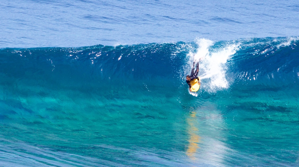 Gran Canaria which includes surfing, general coastal views and surf