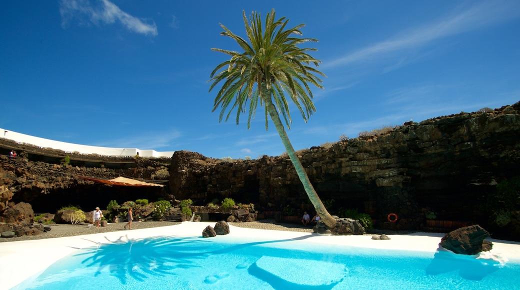 Jameos del Agua welches beinhaltet tropische Szenerien und Pool