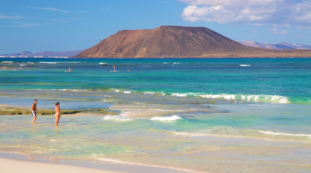 Corralejo Beach which includes swimming, mountains and general coastal views