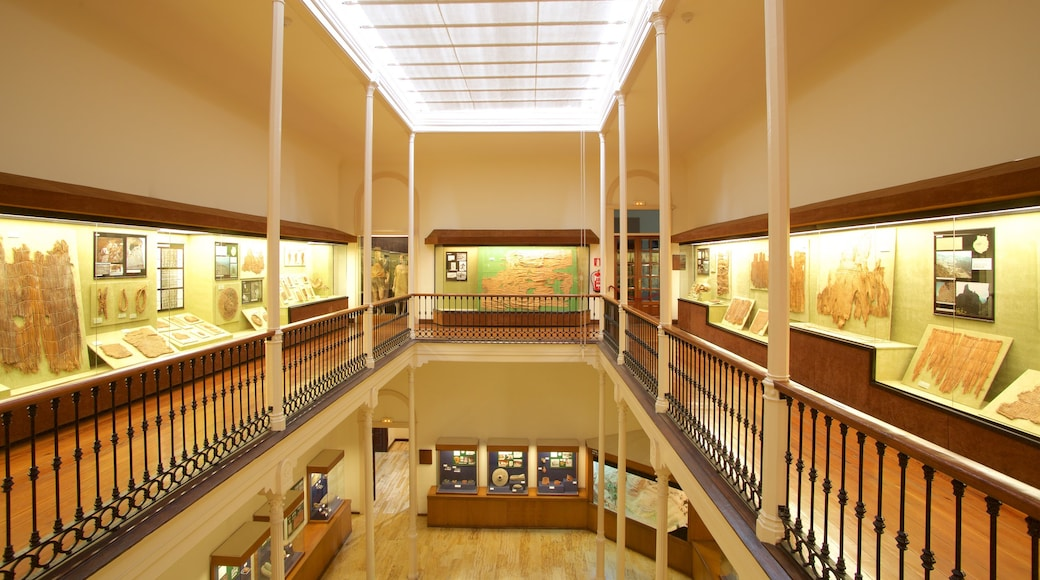 Canarian Museum which includes interior views