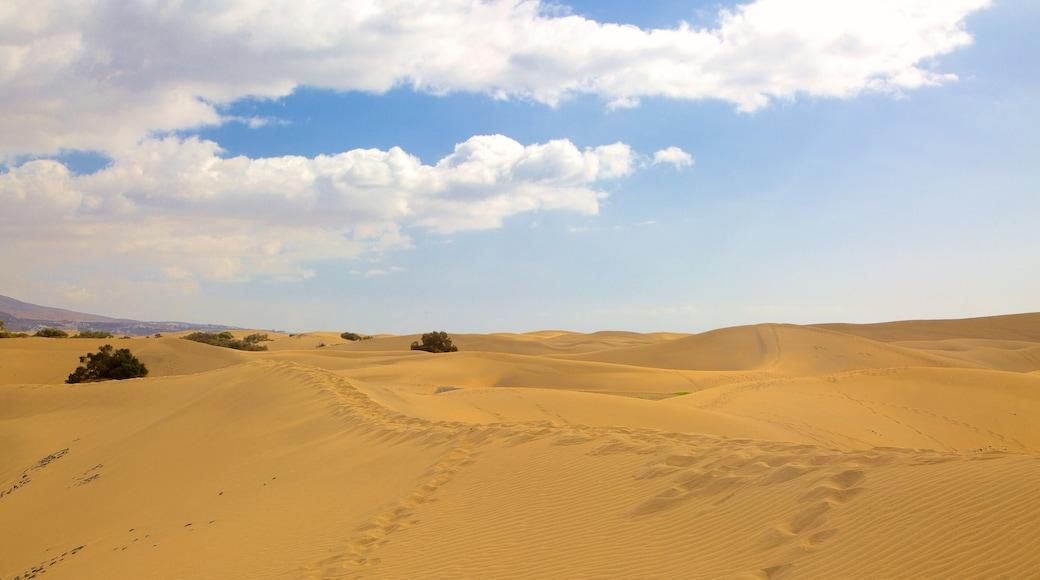 Dünen von Maspalomas das einen Wüstenblick