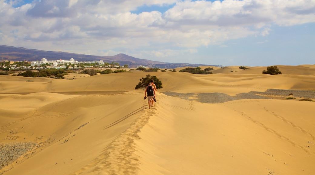 Dünen von Maspalomas das einen Wüstenblick sowie kleine Menschengruppe