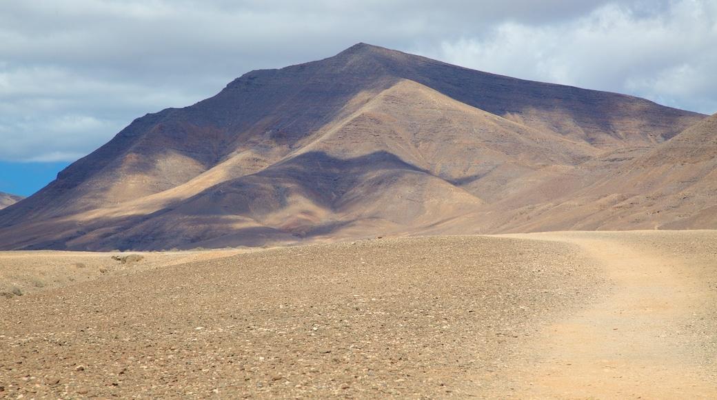Plage de Papagayo montrant montagnes et vues du désert