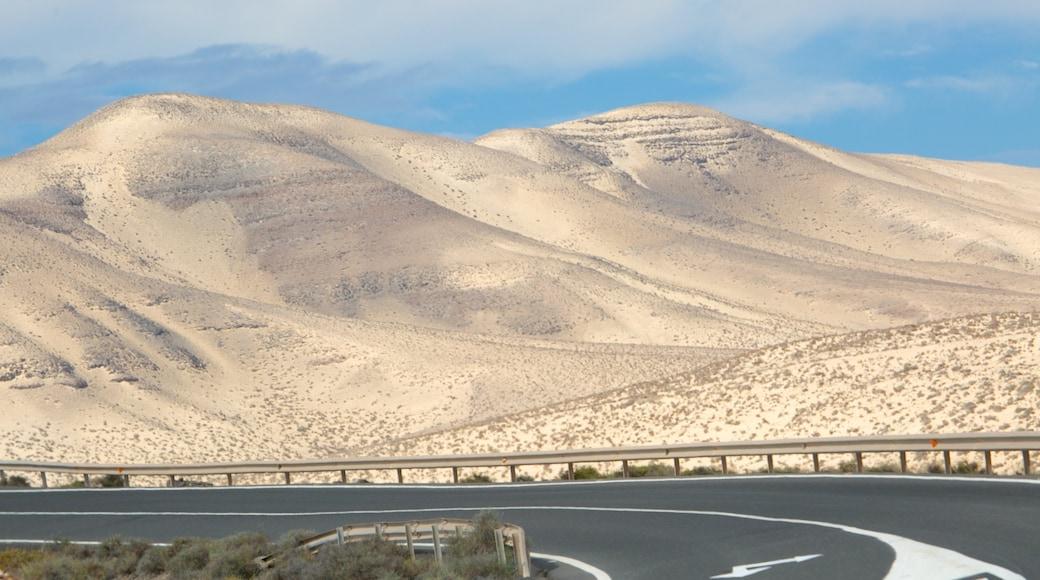 Plage de Sotavento de Jandia mettant en vedette vues du désert