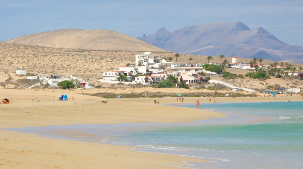 Plage de Sotavento de Jandia qui includes vues littorales, montagnes et ville côtière