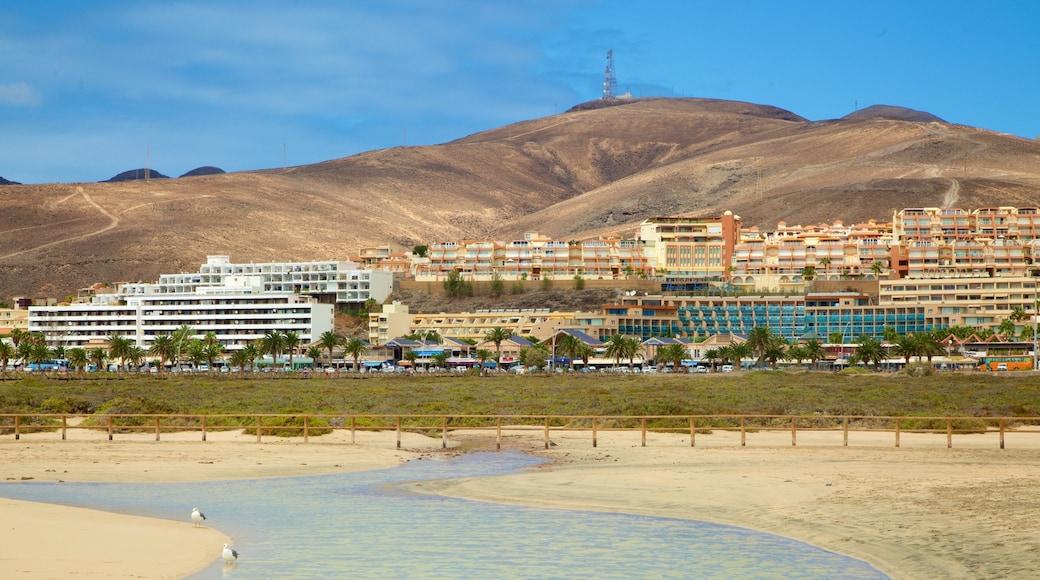 Playa de Jandia caratteristiche di spiaggia sabbiosa, montagna e lago o sorgente d\'acqua