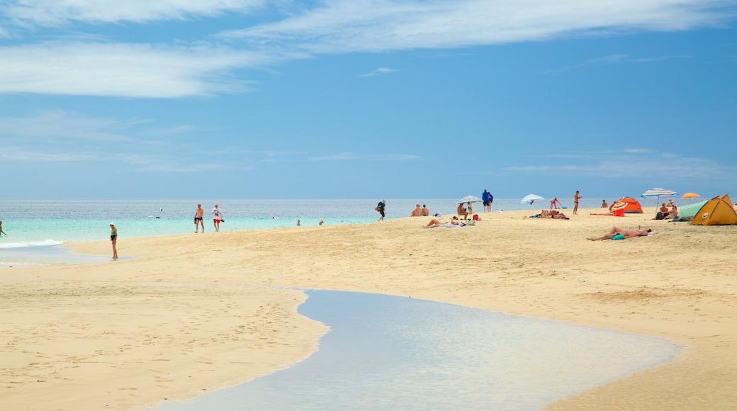 Playa de Jandia caratteristiche di spiaggia sabbiosa e vista della costa