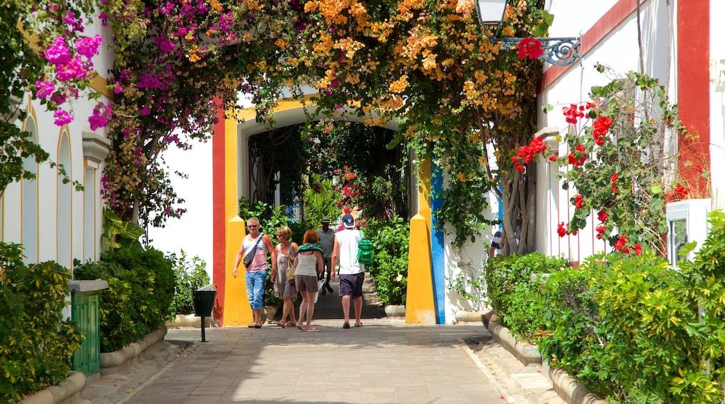 Mogán que incluye un jardín y flores