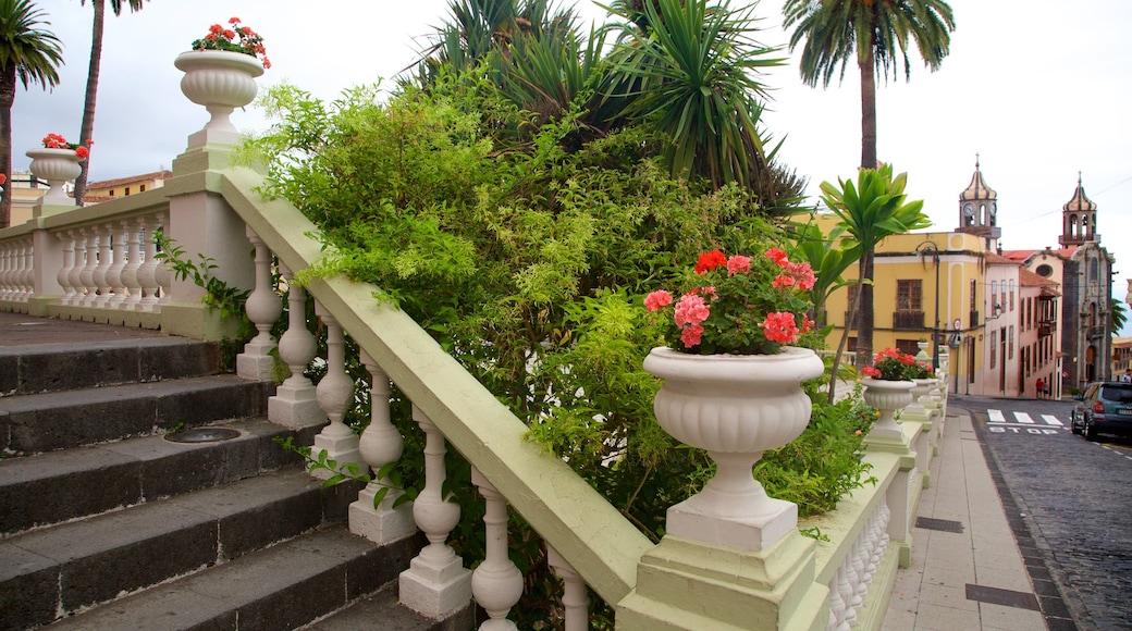 La Orotava bevat bloemen en een stad