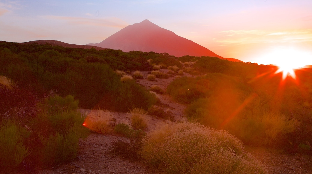 Santiago del Teide og byder på fredfyldte omgivelser, bjerge og en solnedgang