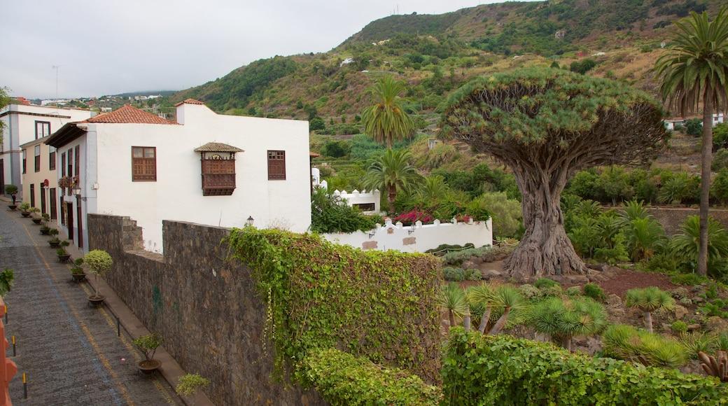 Icod de los Vinos som viser en lille by eller en landsby