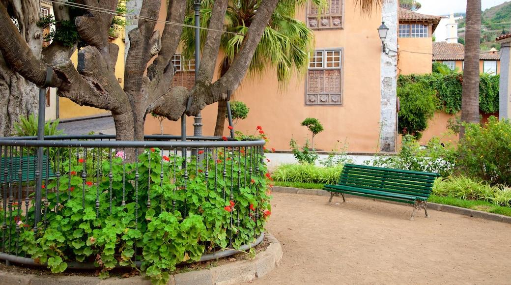 Icod de los Vinos som omfatter en park