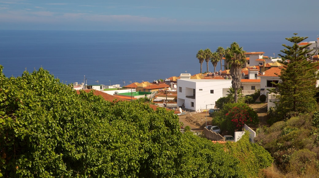 Sauzal que incluye vistas de una costa y una localidad costera