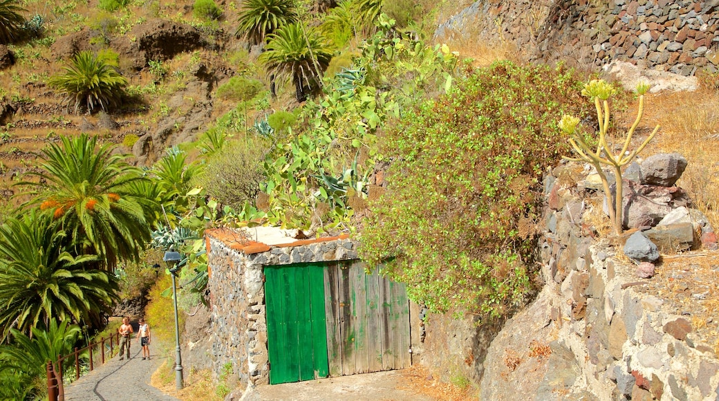 Masca showing a house