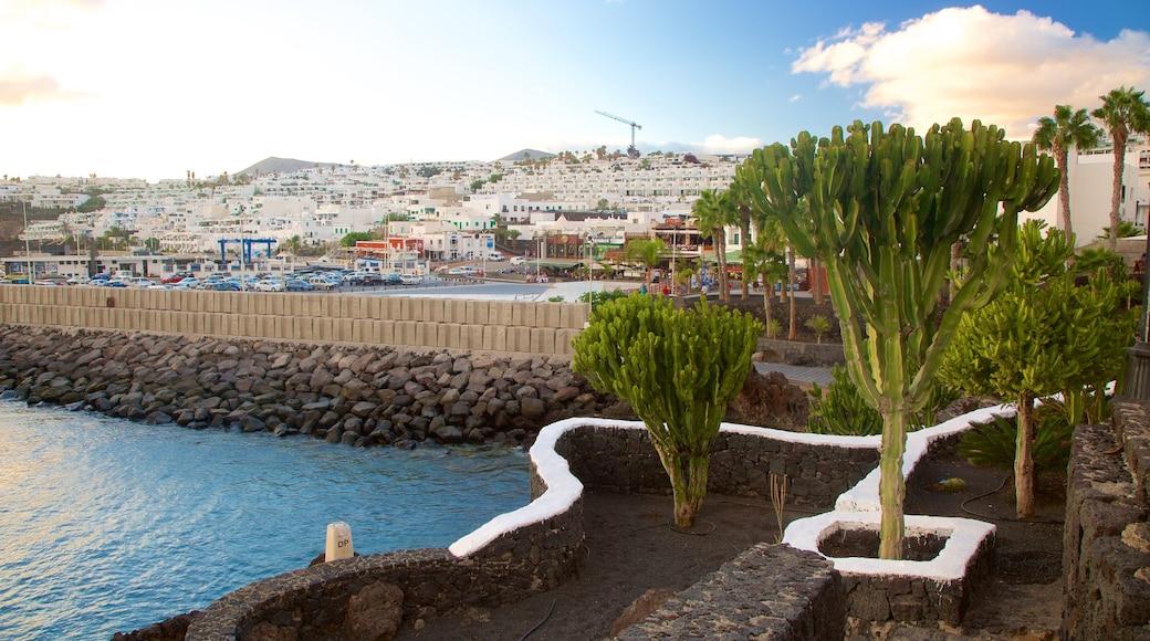 Puerto del Carmen ofreciendo una bahía o un puerto y litoral accidentado