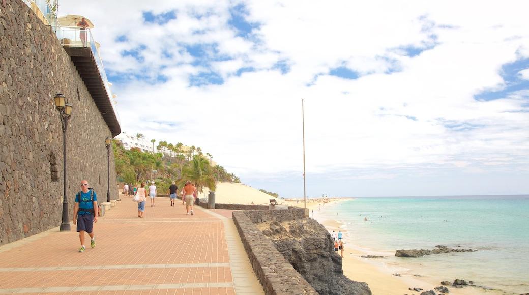 Morro Jable welches beinhaltet allgemeine Küstenansicht
