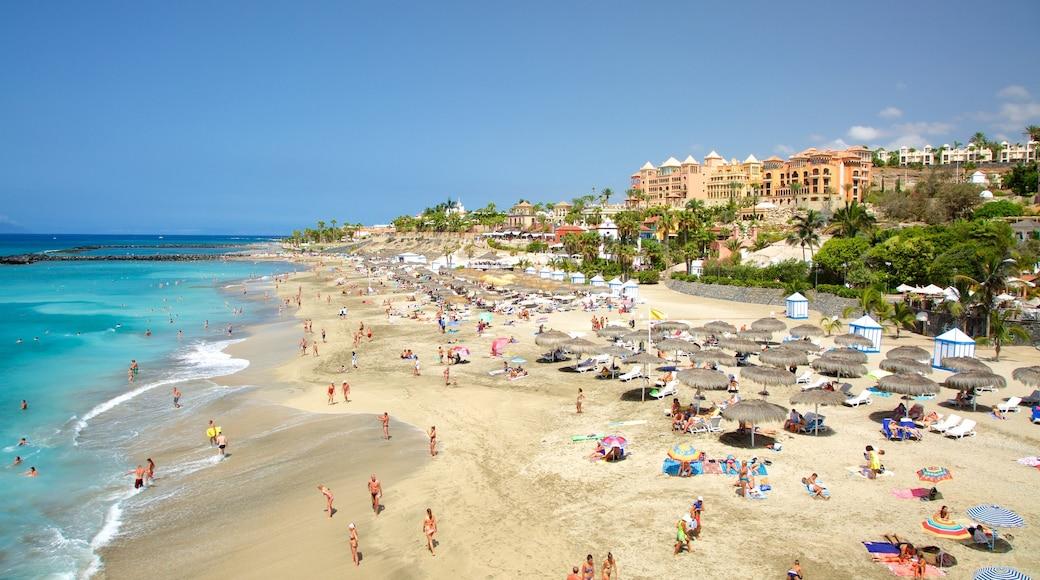 Playa del Duque, Adeje, Spanien som omfatter udsigt over kystområde, en strand og en kystby