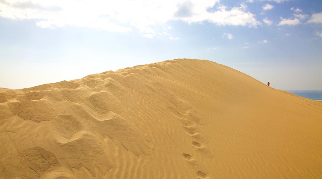 Dünen von Maspalomas welches beinhaltet Wüstenblick