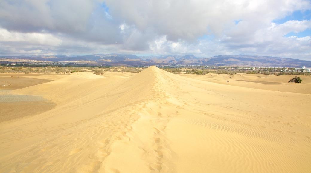 Dünen von Maspalomas mit einem Wüstenblick