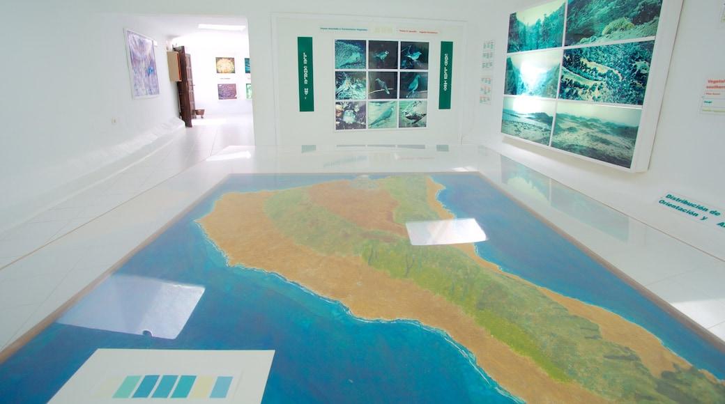 Jameos del Agua qui includes vues intérieures