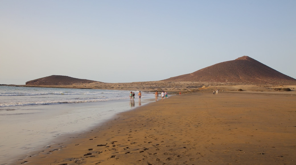 El Medano Beach which includes tranquil scenes, general coastal views and a sandy beach