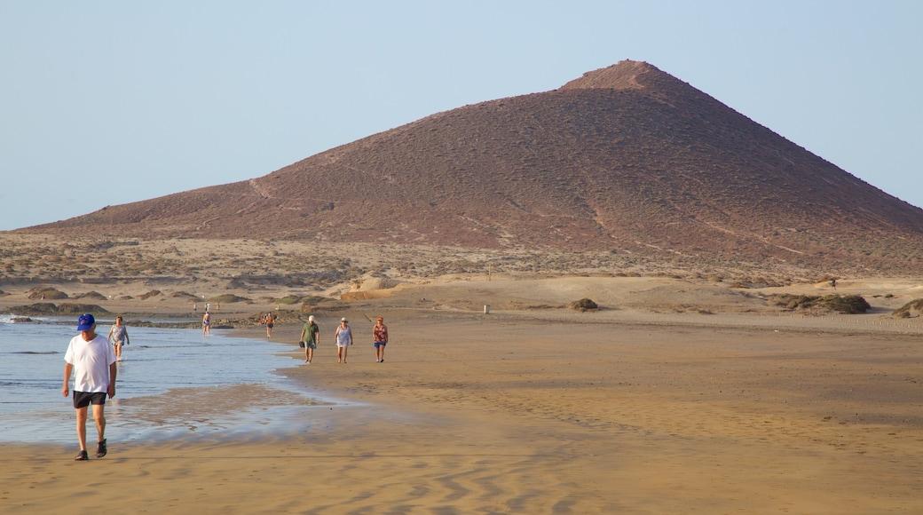 El Médano Strand som viser en strand, fredfyldte omgivelser og udsigt over kystområde