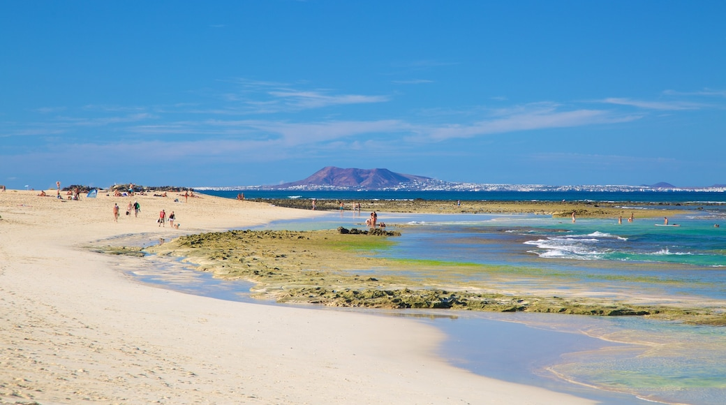 Playa de Corralejo ofreciendo una playa de arena y vistas de una costa