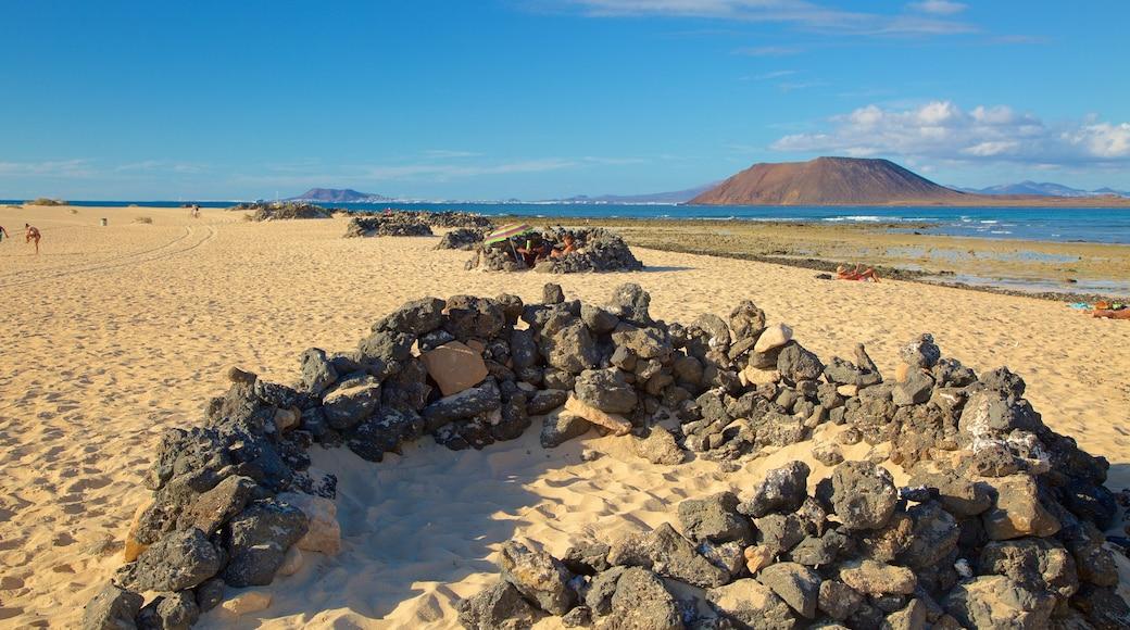 Playa de Corralejo ofreciendo vistas de una costa y una playa