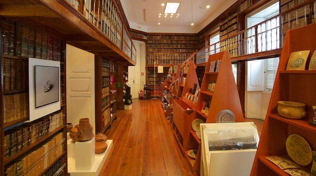Kanarisches Museum das einen Innenansichten