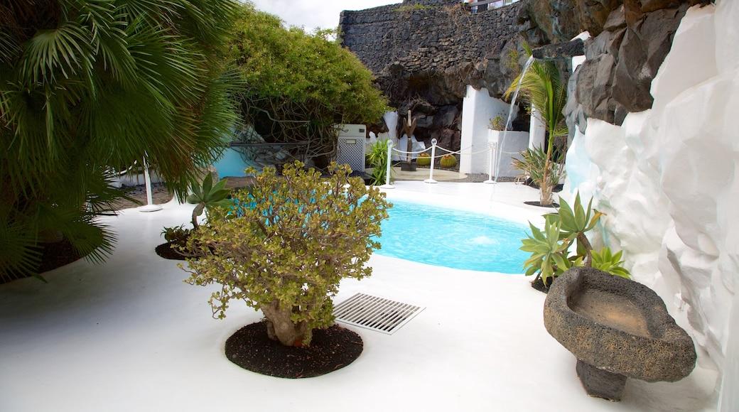 Fondation Cesar Manrique montrant piscine