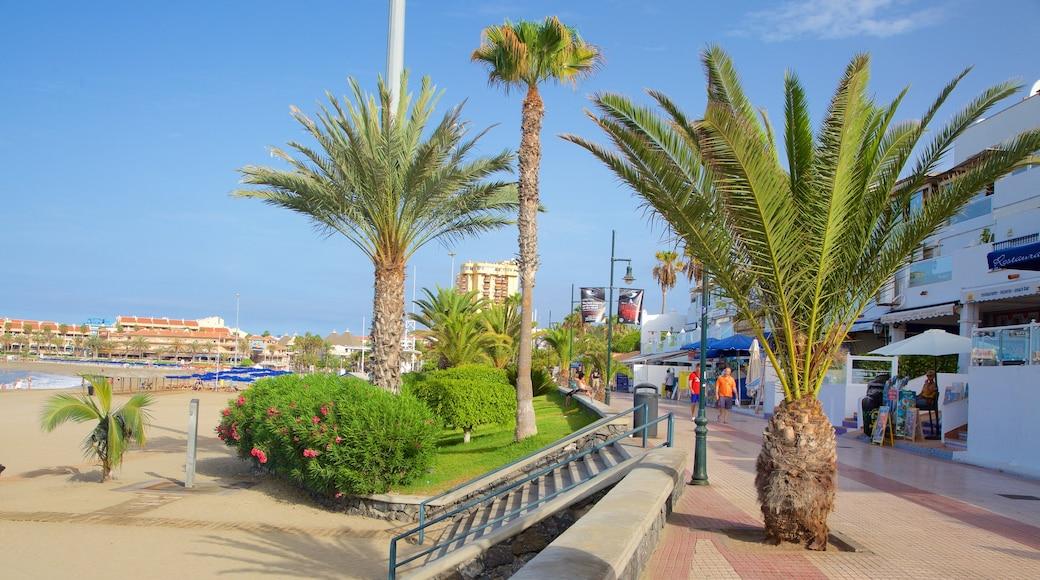 Plage de Las Vistas mettant en vedette ville côtière