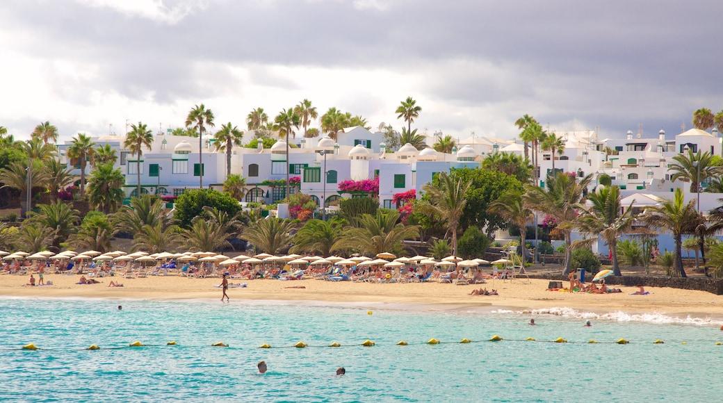 Las Cucharas Beach which includes a coastal town, swimming and general coastal views