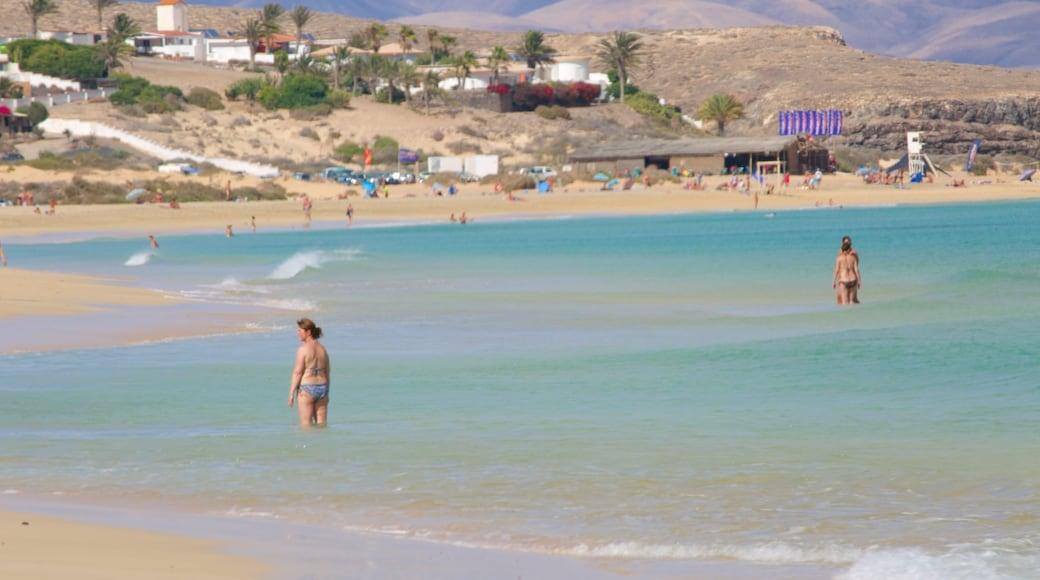 Playas de Sotavento de Jandía welches beinhaltet Küstenort, Strand und allgemeine Küstenansicht