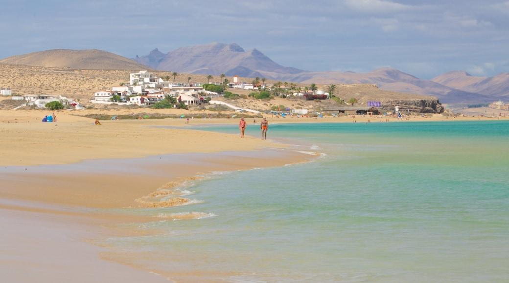 Playas de Sotavento de Jandía welches beinhaltet Strand, ruhige Szenerie und Küstenort