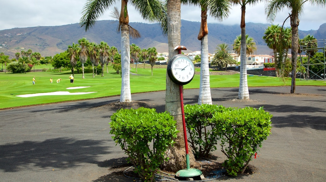 Golf Costa Adeje som viser golf og tropiske områder