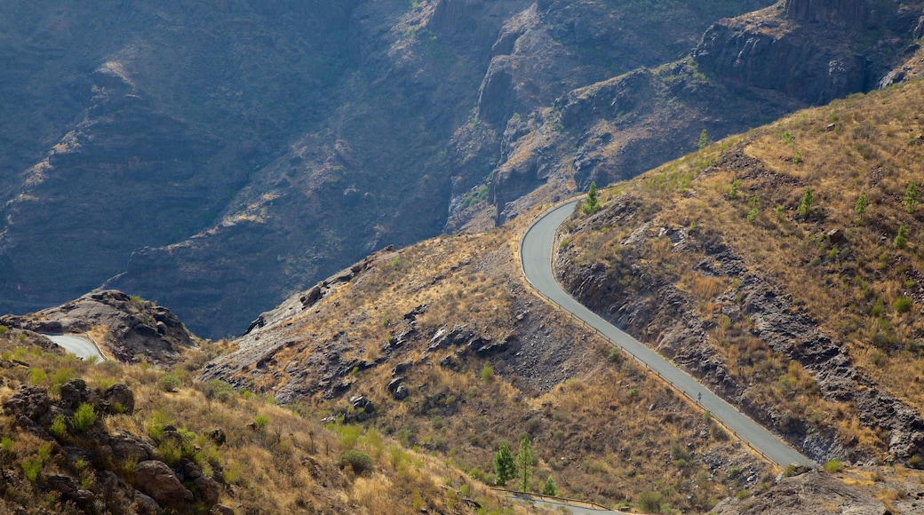 Gran Canaria which includes a gorge or canyon and tranquil scenes