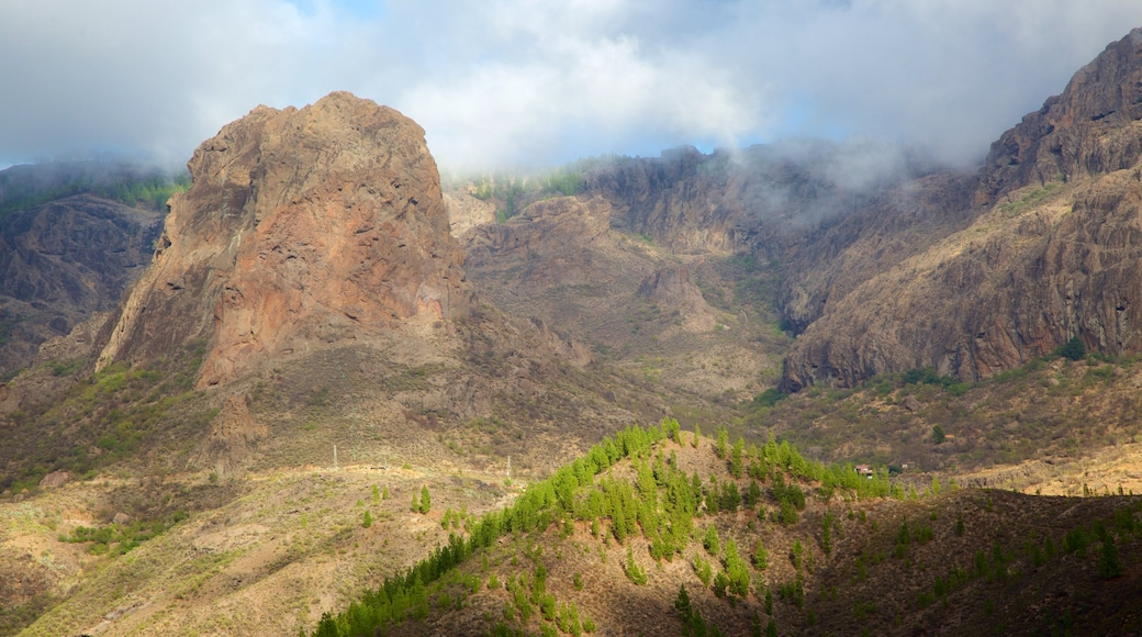 Gran Canaria featuring mist or fog, tranquil scenes and mountains