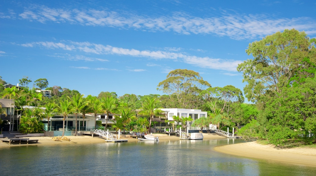 Noosaville showing a sandy beach, a house and a coastal town