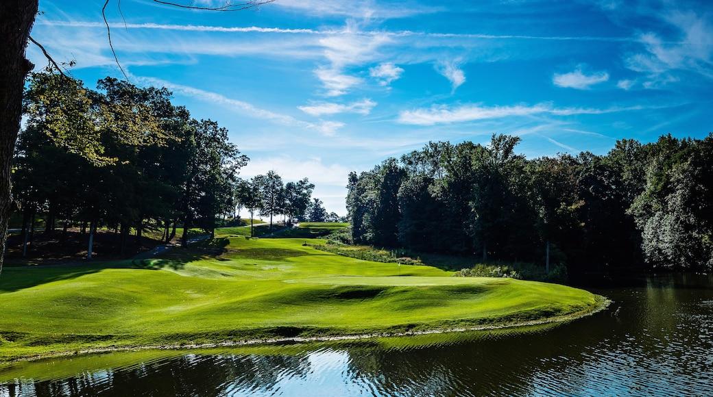 傑士伯 其中包括 高爾夫, 池塘 和 森林