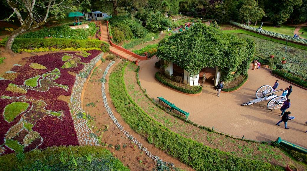 Botanical Gardens montrant parc