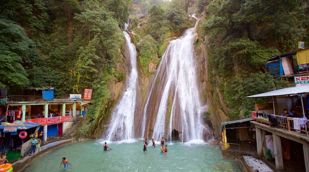 Dehradun which includes rainforest, a waterfall and swimming