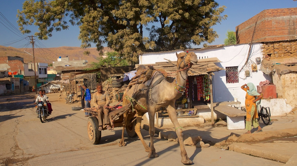 Ranthambore National Park featuring a small town or village and land animals