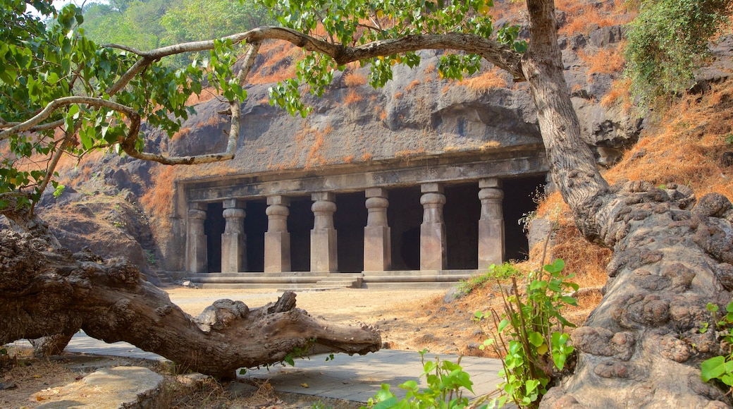 Elephanta Caves showing heritage elements and caves