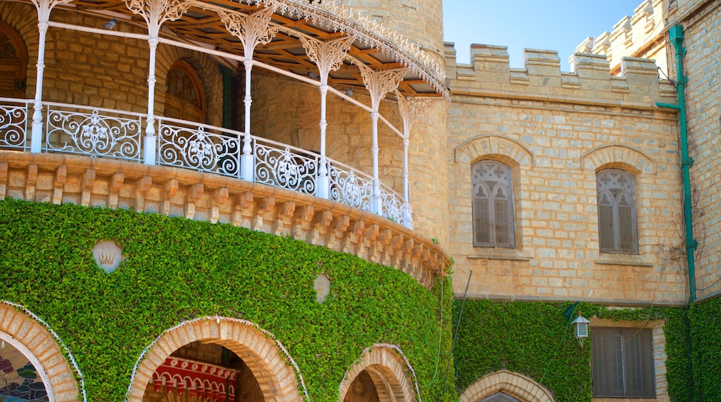 Bangalore Palace which includes heritage elements, château or palace and heritage architecture