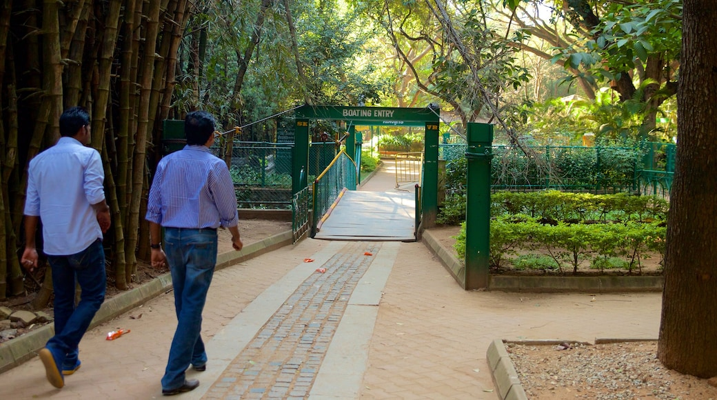 Cubbon Park featuring a park as well as a small group of people