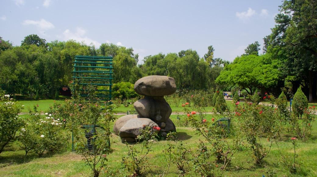 Zakir Rose Garden featuring a garden