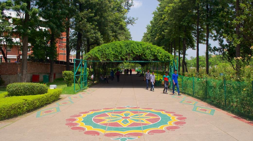 Zakir Rose Garden which includes a garden