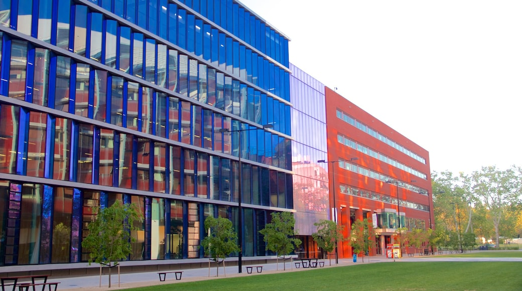 University of Adelaide showing modern architecture