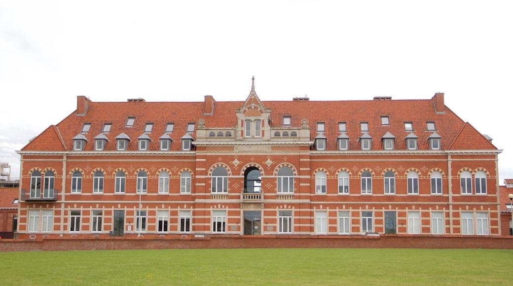Ostende das einen Geschichtliches und historische Architektur