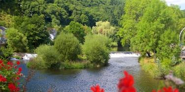 Vianden featuring a garden and a lake or waterhole